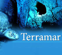 Terramar Productions